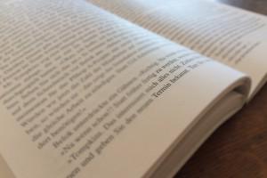 Das erzählende Sachbuch