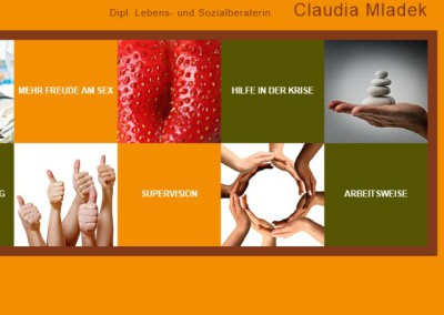 Webtexte: www.mladek.at
