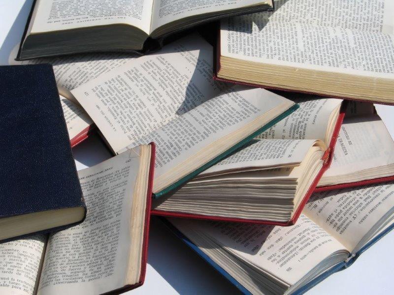 Bücher, die geschrieben werden sollten