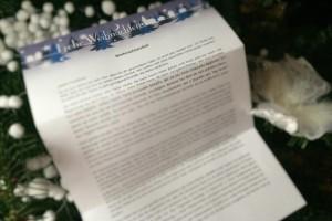 Kurzgeschichte WTH, Weihnachtskalkül